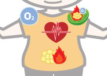 たった4分で30分のジョギングと同じ効果!?効率よくダイエットする運動方法を教えます